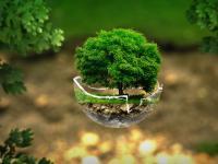 appello-ambiente-adi